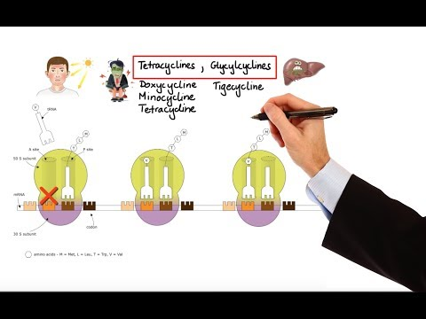 Pharmacology – ANTIBIOTICS – NUCLEIC ACID & FOLIC ACID & PROTEIN SYNTHESIS INHIBITORS (MADE EASY)