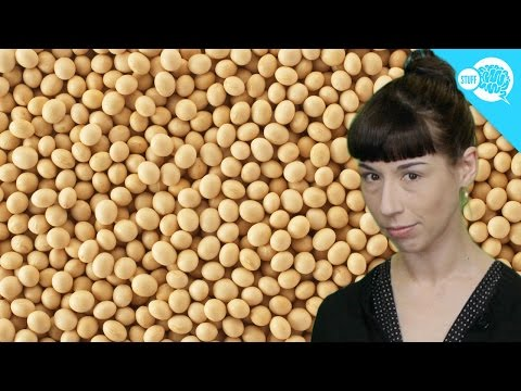 Does Soy Cause Cancer?