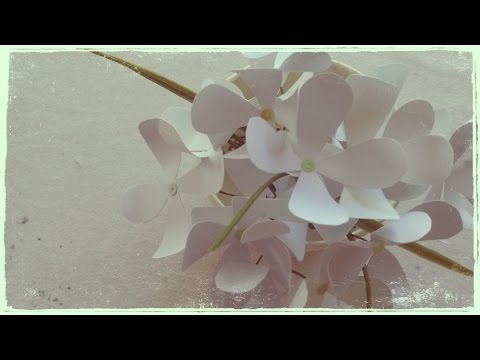 DIY - White Paper Flowers For Your Cute House