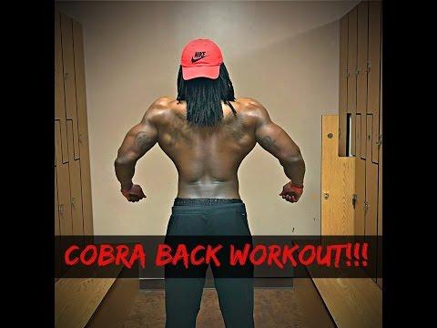 Spyder Fit: Cobra Back Workout