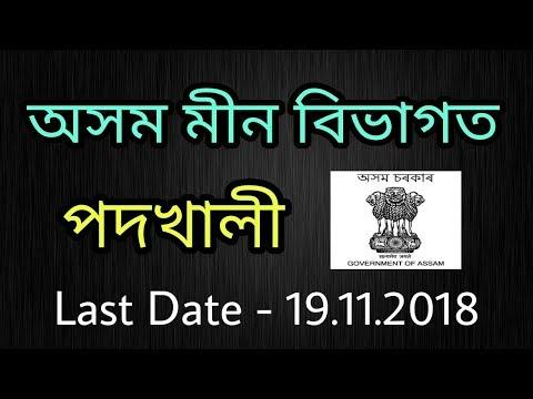 Directorate Of Fisheries,Assam Recruitment 2018 – Apply Offline For Junior Assistant Post
