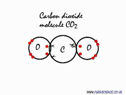 Covalent bonding in a carbon dioxide molecule.
