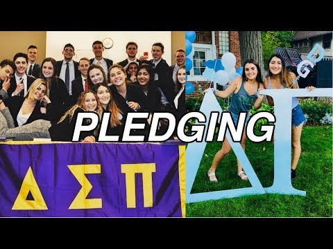 WHAT IS PLEDGING? SOCIAL VS PROFESSIONAL GREEK LIFE (ACTUAL TRUTH)