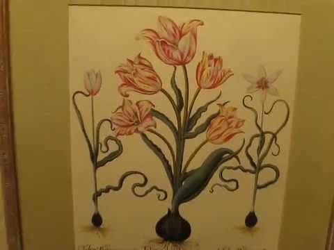 Another VALUABLE GOODWILL FIND by DREW, Botanical Litho Prints
