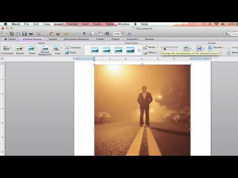 How to Fade Pictures in Microsoft Word 2007 : Microsoft Word Basics