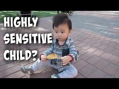 Highly Sensitive Child? A VLOG