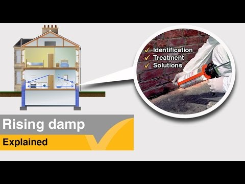 Rising damp information and treatment