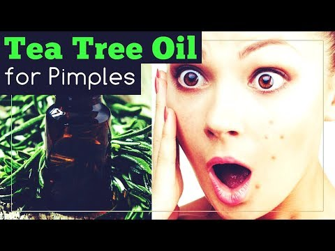 Tea Tree Oil for Pimples: It Works! This Is How To Use It.