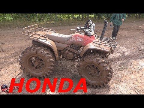 HONDA 300...28