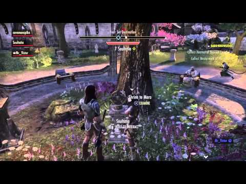 Getting Married In ESO.