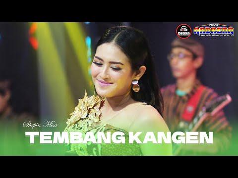 Download Lagu Shepin Misa Tembang Kangen Mp3