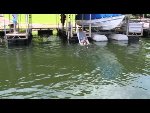 Wet Steps K9 Aqua Ramp