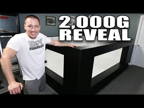 2,000G aquarium reveal - IT'S READY FOR WATER!!!