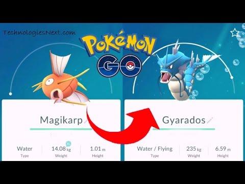 Pokemon Go 100 Magikarp evolves into Gyarados how to evolve Magikarp to Gyarados