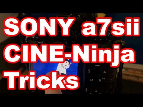 Sony a7sii Cinema Ninja Tricks: Critical Focus Pitfalls You MUST avoid