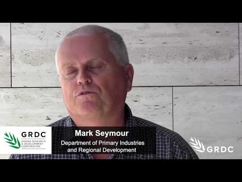 Mark Seymour, DPIRD, speaks on break crop agronomy and Seed of Light award | GRDC Updates | Western