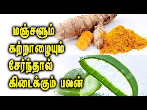 Mix Aloe Vera and turmeric and see the magic -  Tamil Health Tips