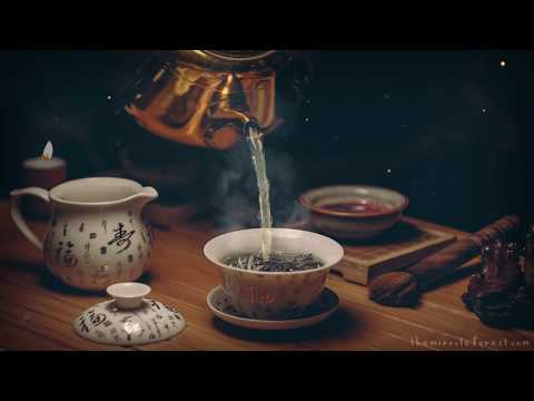 🎧 8 HOURS of Magical Tearoom Ambience ☕ Relaxing asmr Soundscape