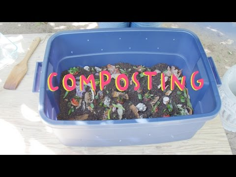 How to Compost at Home (Smart Life Hacks)