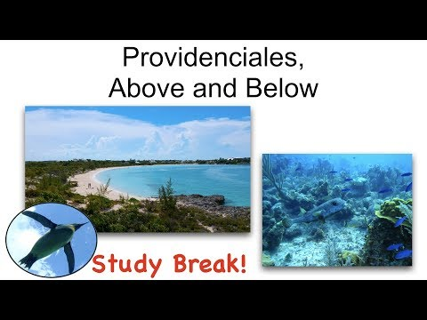 Study Break:  Providenciales from Above and Below