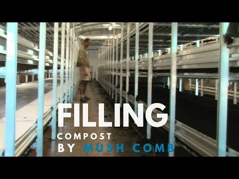 Mushroom Machinery - Successful Filling of Compost with Basic Mushroom Machinery