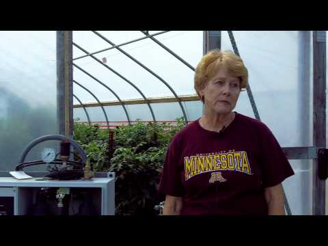 Pat Johnson |  MA Horticulture and Research Scientist