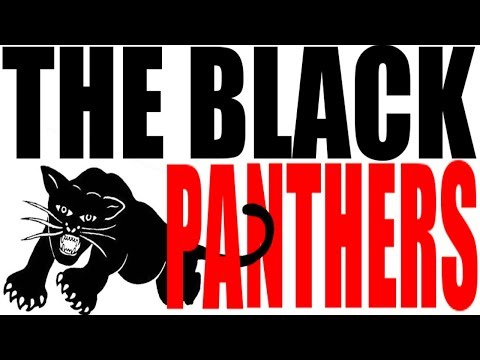 Who Were the Black Panthers? US History Review