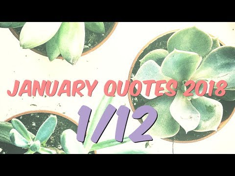 Inspirational Quotes - January 2018 w/ My Cat 💛| Monthly Series✨