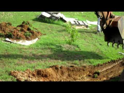 Root Cellar - Part 1