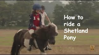 How to ride a Shetland Pony: TV Episode 10