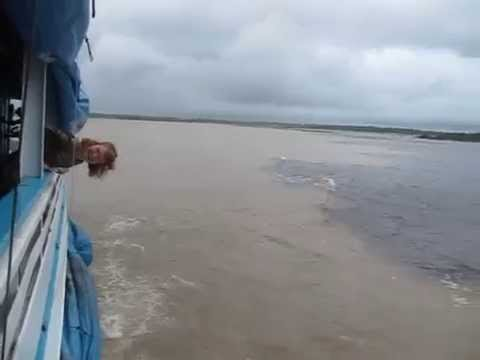 meeting of rivers - amazon river and rio negro
