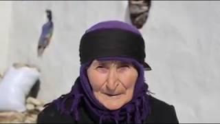 Раджаб Сафаров Диде (МАМА)
