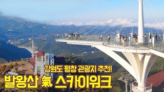 강원도 평창 관광지 추천! '발왕산 氣 스카이워크'