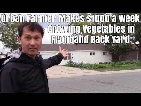 Urban Farmer Makes $1000 a Week Growing Vegetables in Rental Home