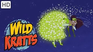 Download Wild Kratts - Part 1: Creature Rescue from the Evil Fashion Designer | Kids Video