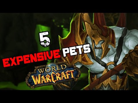 5 Battle Pets That Are Worth A Lot of Gold in World of Warcraft