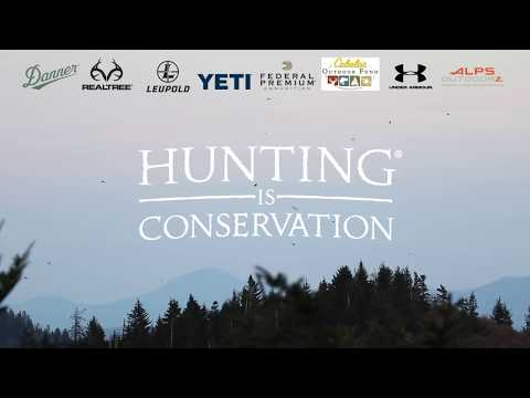 Hunting IS Conservation - From Ski Hill to Wildlife Habitat