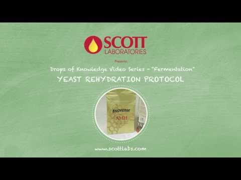 Scott Laboratories - Rehydration Protocol for Lallemand Yeast