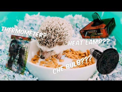 UNBOXING VIDEO! How to heat your hedgehog's cage!