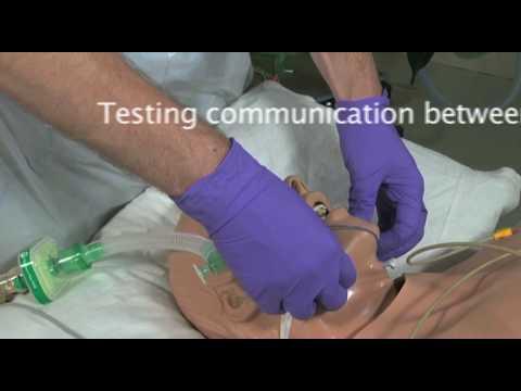 Brain Stem Testing - A Demonstration