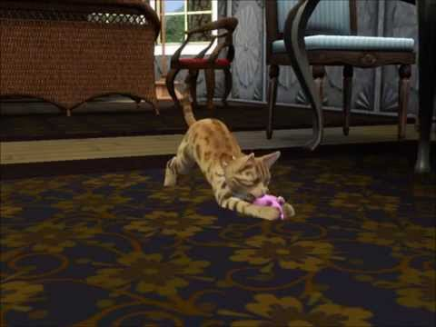 The Sims 3 - kitty just wants to have fun