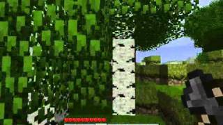 Minecraft Tips And Tricks  1.0 - Day 0