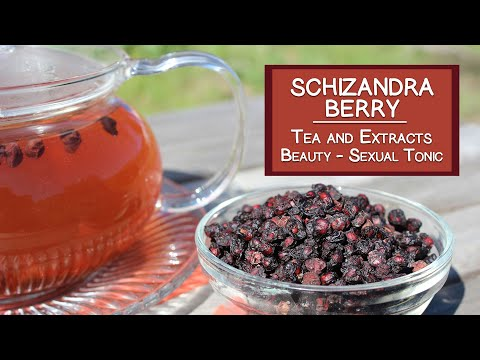 Schizandra Berry Tea and Extracts, Renowned Beauty Herb and Sexual Tonic