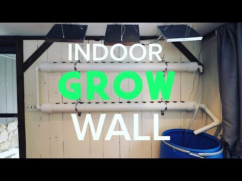 Build a Hydroponic Grow Wall Inside - Grow Plants Year Round and Save Money!