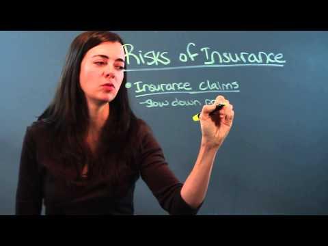 Risks of Insurance