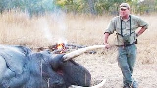 Big Game Hunter Gets Crushed By Elephant