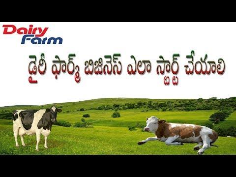 డైరీ ఫార్మ్ బిజినెస్/How to Make Money Dairy Farming Business ll Monthly Earning Best Profits