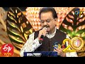 SP Balu Performs Materani Chinnadani Song In ETV 20 Years Celebrations 23rd August 2015 mp3