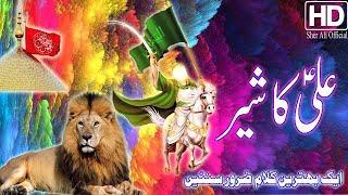 Ali ع ka sher le jata agar talwar Darya par | Manqabat