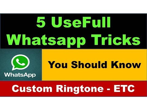 Use 5 new Whatsapp Trick and Become a Super User | Custom Ringtone, Click 2 Chat, You Should Know